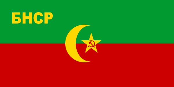 Flag of the Bukharan Peoples Soviet Republic